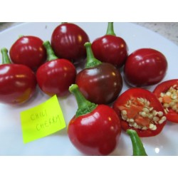 PAPRYKA CHERRY CHILI