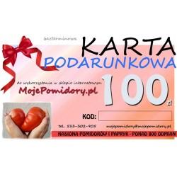 KARTA PODARUNKOWA 100